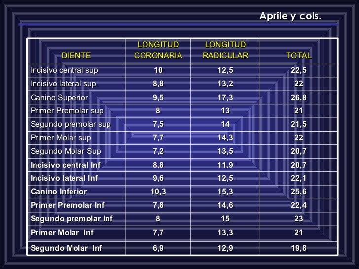 Aprile y cols. 19,8 12,9 6,9 Segundo Molar  Inf 21 13,3 7,7 Primer Molar  Inf 23 15 8 Segundo premolar Inf 22,4 14,6 7,8 P...
