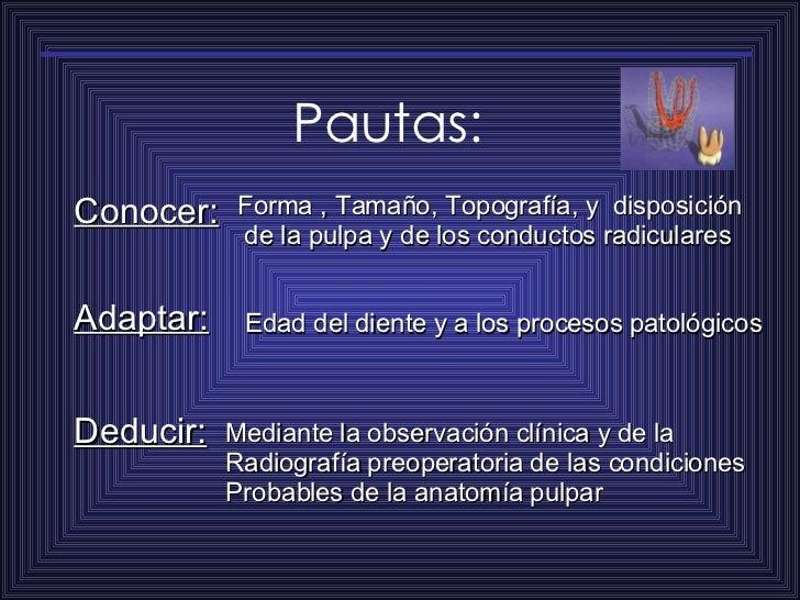 Pautas: Conocer: Forma , Tamaño, Topografía, y  disposición de la pulpa y de los conductos radiculares Adaptar: Edad del d...