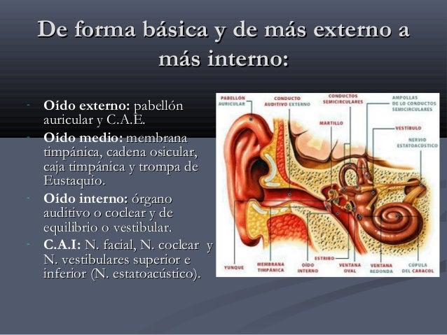 Anatomia Del Oido Medio e Interno FMC