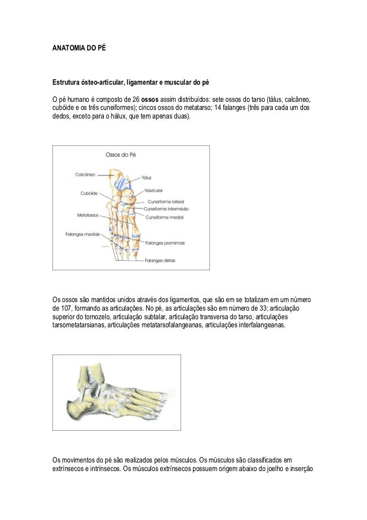 ANATOMIA DO PÉ    Estrutura ósteo-articular, ligamentar e muscular do pé  O pé humano é composto de 26 ossos assim distrib...