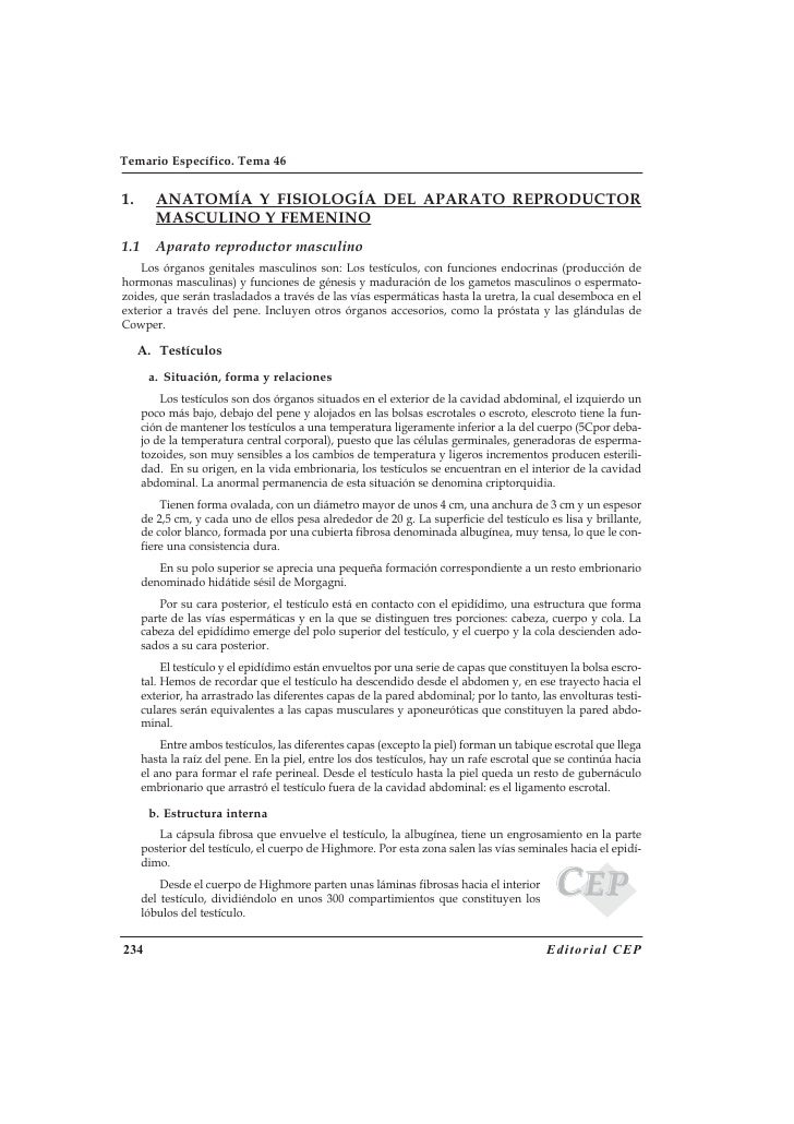 Anatomia fisiologia-Aparato-Masculino-fFmenino
