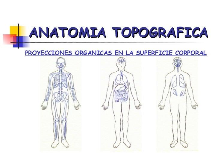 Anatomia Topografica Forense Aplicada a la Medicina Legal