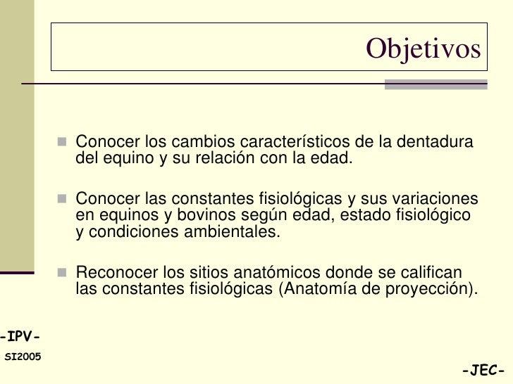 Hermosa Anatomía Mbbs 1er Año Colección de Imágenes - Anatomía de ...