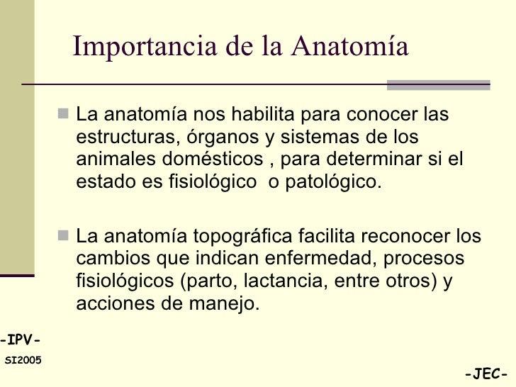 Único Importancia De La Anatomía Bandera - Anatomía de Las ...