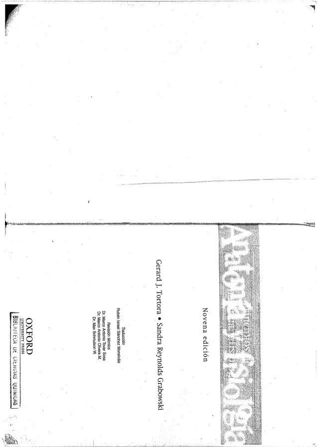 Vistoso Anatomía Y Fisiología Edición 9 Imagen - Imágenes de ...