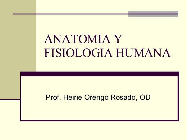 anatomia-y-fisiologia-humana-1-728.jpg?cb=1208514317