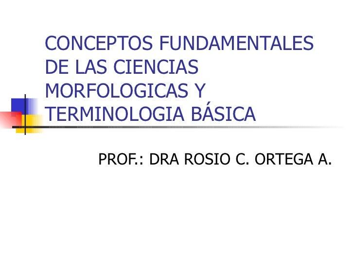 CONCEPTOS FUNDAMENTALES DE LAS CIENCIAS MORFOLOGICAS Y TERMINOLOGIA BÁSICA PROF.: DRA ROSIO C. ORTEGA A.