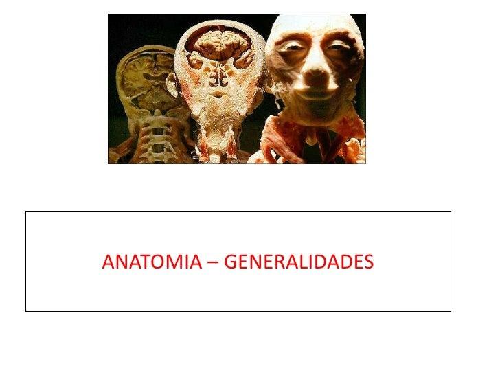 ANATOMIA – GENERALIDADES<br />