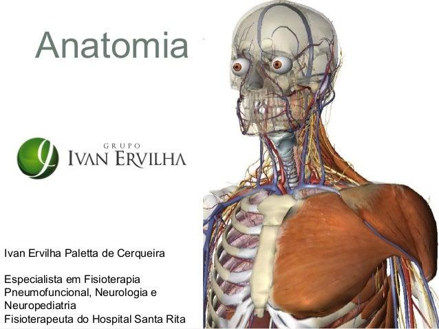 AnatomiaIvan Ervilha Paletta de CerqueiraEspecialista em FisioterapiaPneumofuncional, Neurologia eNeuropediatriaFisioterap...