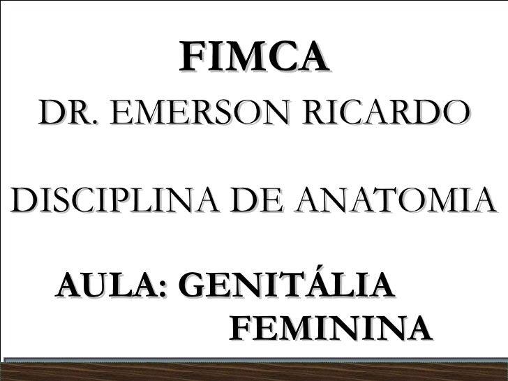 FIMCA   DR. EMERSON RICARDO  DISCIPLINA DE ANATOMIA AULA: GENITÁLIA    FEMININA