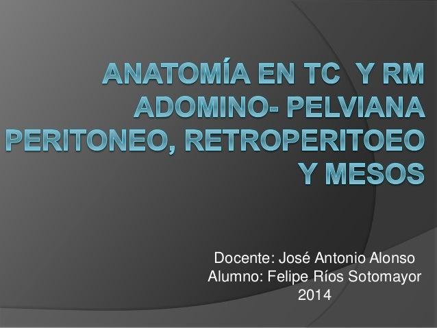 Docente: José Antonio Alonso Alumno: Felipe Ríos Sotomayor 2014