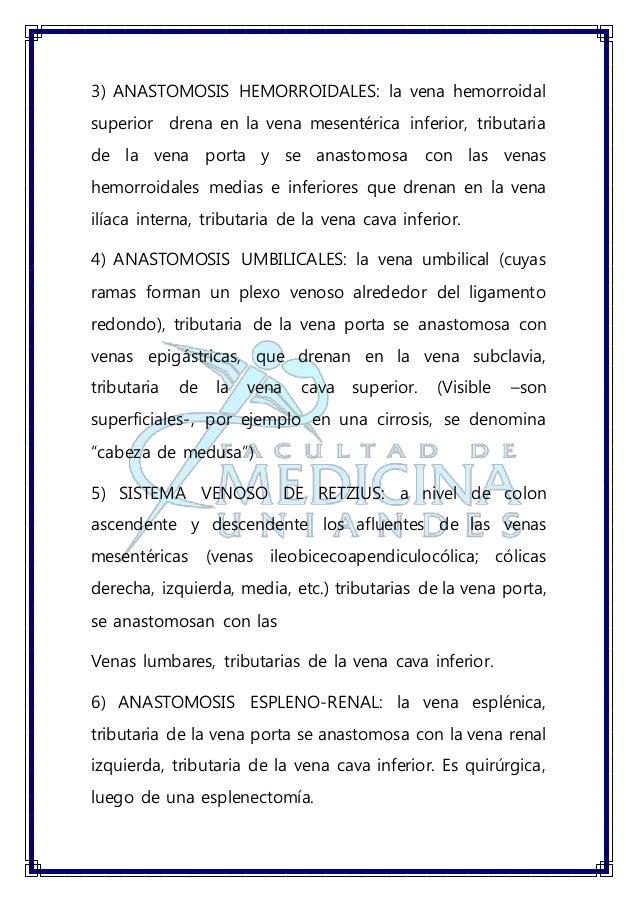 Anatomia anastomosis porto cava sdpc