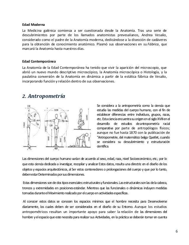 Anatomia,antropometria y ergonomia