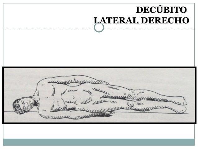 Anatomia básica y posiciones de cadáver