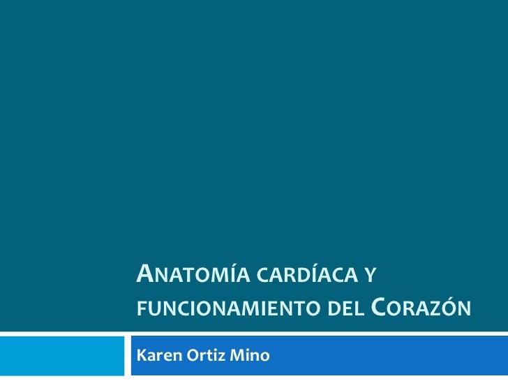Anatomía cardíaca y funcionamiento del Corazón<br />Karen Ortiz Mino<br />