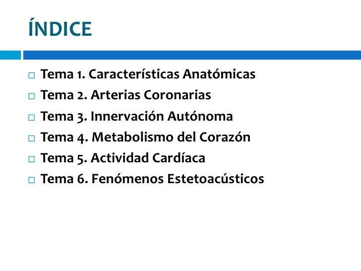 Anatomia cardiaca Slide 2