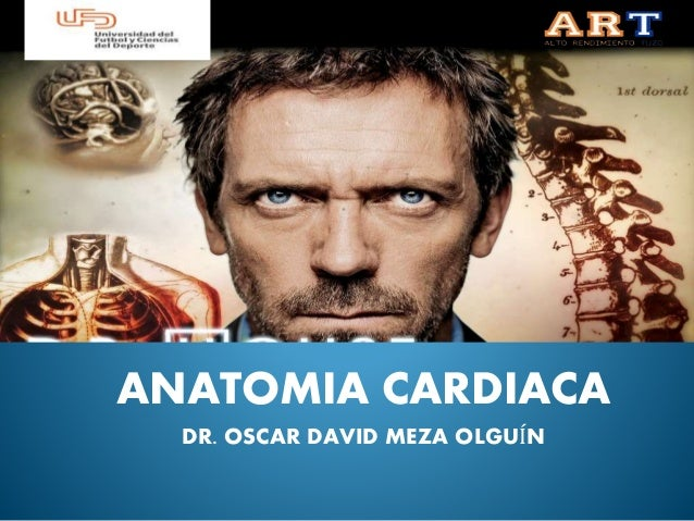 ANATOMIA CARDIACA DR. OSCAR DAVID MEZA OLGUÍN