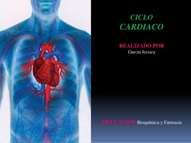 Anatomia ciclo cardiaco final