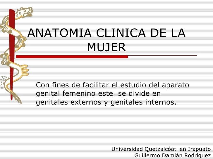 ANATOMIA CLINICA DE LA       MUJER Con fines de facilitar el estudio del aparato genital femenino este se divide en genita...