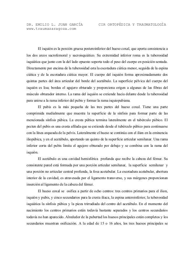 Bonito Partes De La Anatomía Columna Vertebral Imagen - Imágenes de ...