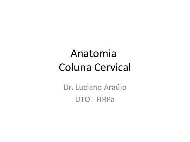 Anatomia Coluna Cervical Dr. Luciano Araújo UTO - HRPa