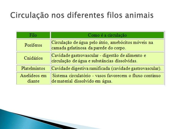 Circulação nos diferentes filos animais<br />