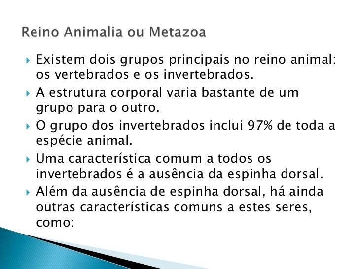 Existem dois grupos principais no reino animal: os vertebrados e os invertebrados. <br />A estrutura corporal varia bastan...