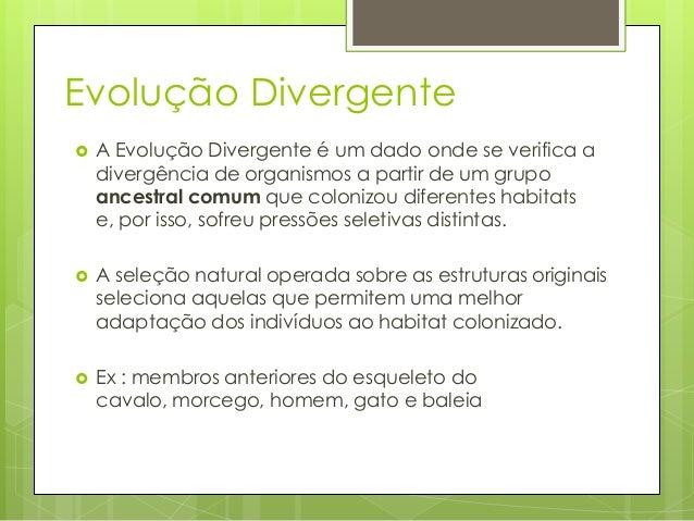 Evolução Divergente   A Evolução Divergente é um dado onde se verifica a divergência de organismos a partir de um grupo a...