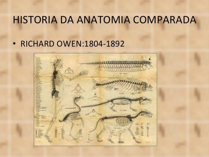 <ul><li>RICHARD OWEN:1804-1892 </li></ul>HISTORIA DA ANATOMIA COMPARADA
