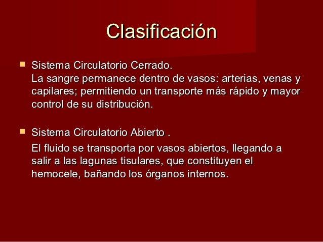 Anatomia comparada del sistema circulatorio