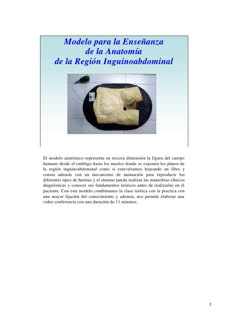 Anatomia Conducto Inguinal