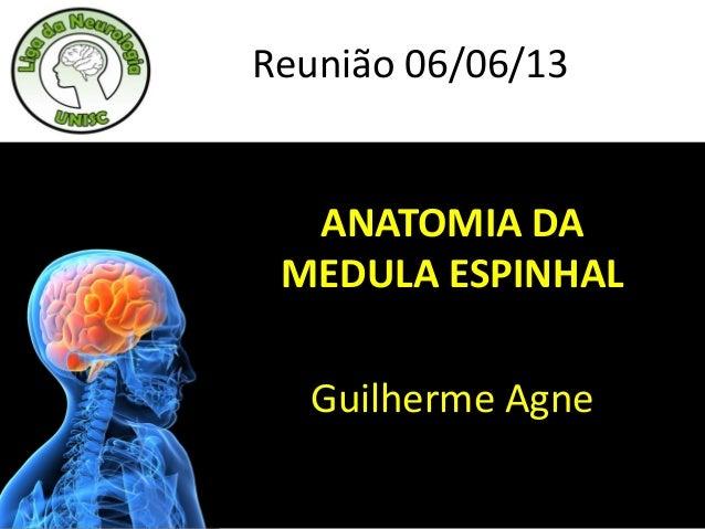 ANATOMIA DAMEDULA ESPINHALGuilherme AgneReunião 06/06/13