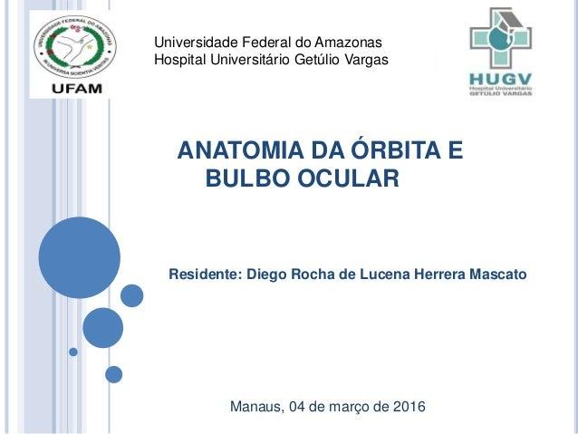 ANATOMIA DA ÓRBITA E BULBO OCULAR Residente: Diego Rocha de Lucena Herrera Mascato Manaus, 04 de março de 2016 Universidad...