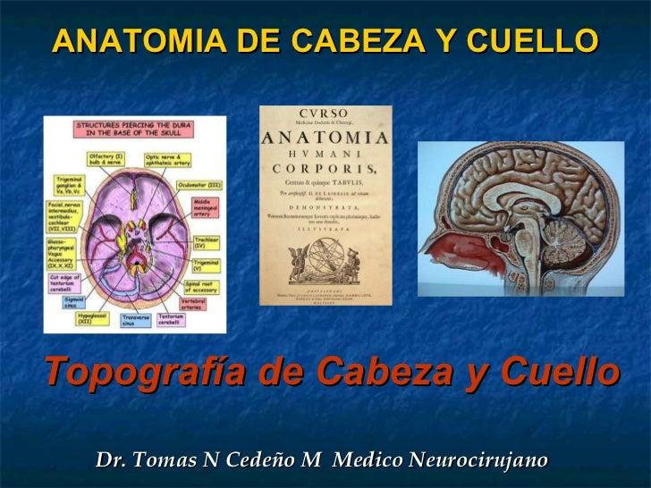 ANATOMIA DE CABEZA Y CUELLO Topografía de Cabeza y Cuello  Dr. Tomas N Cedeño M  Medico Neurocirujano