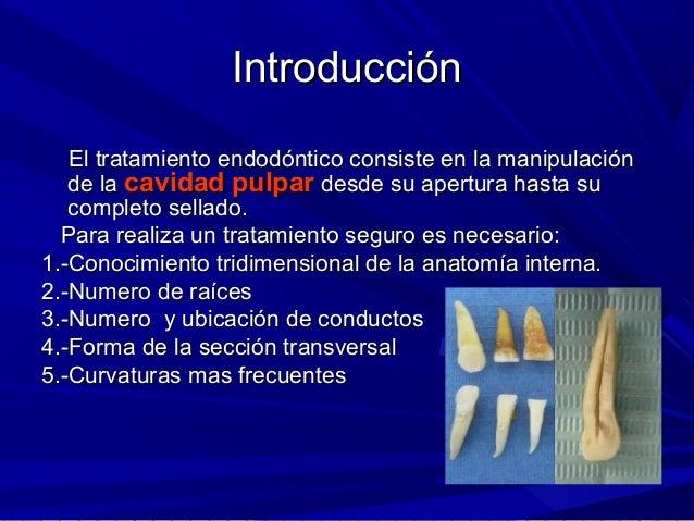 Anatomia De Dientes Anteriores 31 Slide 2