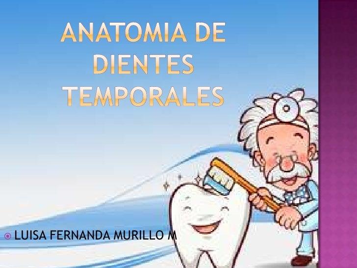 ANATOMIA DE DIENTES TEMPORALES<br />LUISA FERNANDA MURILLO M<br />