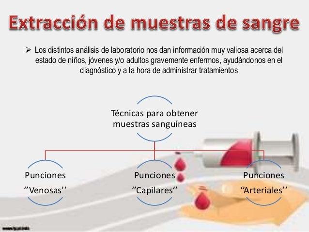 Anatomia de extraccion de sangre.