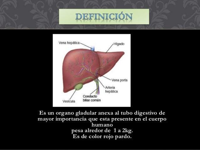 Anatomia de higado ,vesicula biliar y pancreas