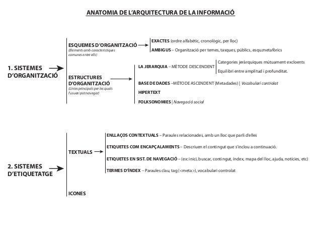 ANATOMIA DE L'ARQUITECTURA DE LA INFORMACIÓ                                                                    EXACTES (or...