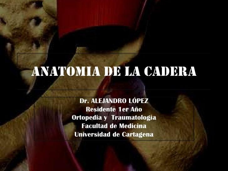 anatomia-de-la-cadera-1-728.jpg?cb=1292169558