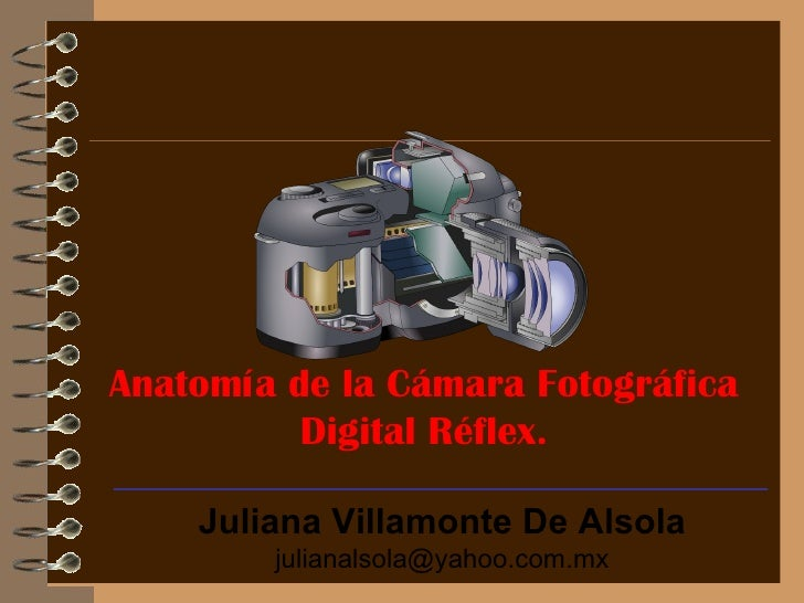 Anatomia De La CáMara Digital Reflex