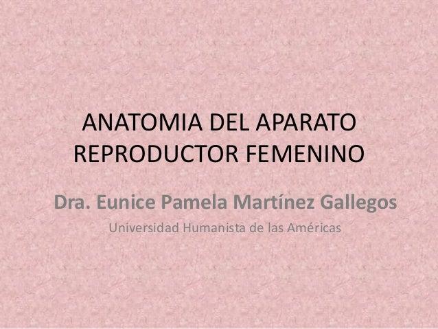 ANATOMIA DEL APARATO REPRODUCTOR FEMENINO Dra. Eunice Pamela Martínez Gallegos Universidad Humanista de las Américas