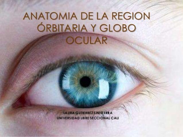 LAURA GUTIERREZ SINISTERRA UNIVERSIDAD LIBRE SECCIONAL CALI ANATOMIA DE LA REGION ÓRBITARIA Y GLOBO OCULAR
