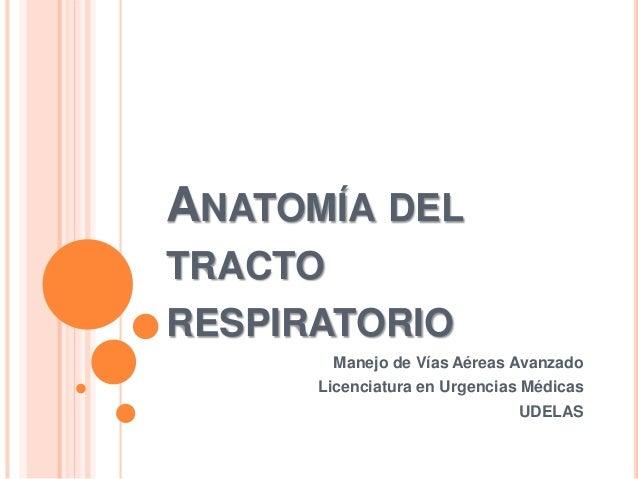 ANATOMÍA DEL TRACTO RESPIRATORIO Manejo de Vías Aéreas Avanzado Licenciatura en Urgencias Médicas UDELAS