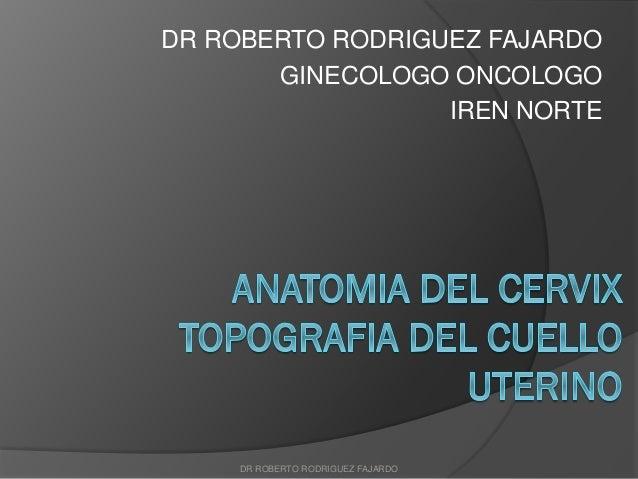 DR ROBERTO RODRIGUEZ FAJARDO GINECOLOGO ONCOLOGO IREN NORTE DR ROBERTO RODRIGUEZ FAJARDO