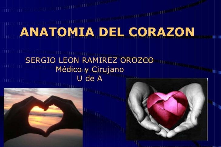 ANATOMIA DEL CORAZON SERGIO LEON RAMIREZ OROZCO Médico y Cirujano U de A