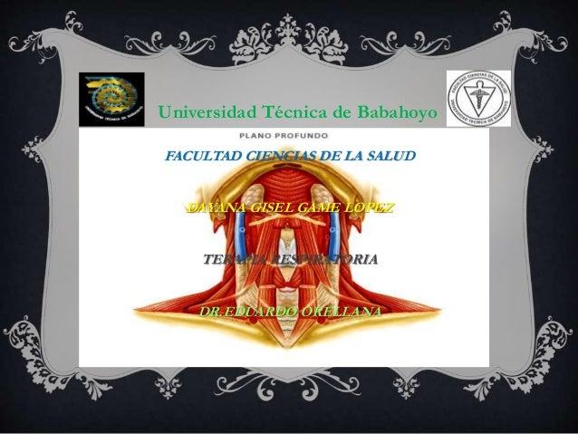 Universidad Técnica de Babahoyo FACULTAD CIENCIAS DE LA SALUD DAYANA GISEL GAME LOPEZ TERAPIA RESPIRATORIA DR.EDUARDO OREL...