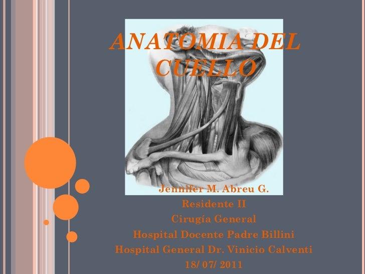 ANATOMIA DEL   CUELLO        Jennifer M. Abreu G.            Residente II          Cirugía General   Hospital Docente Padr...