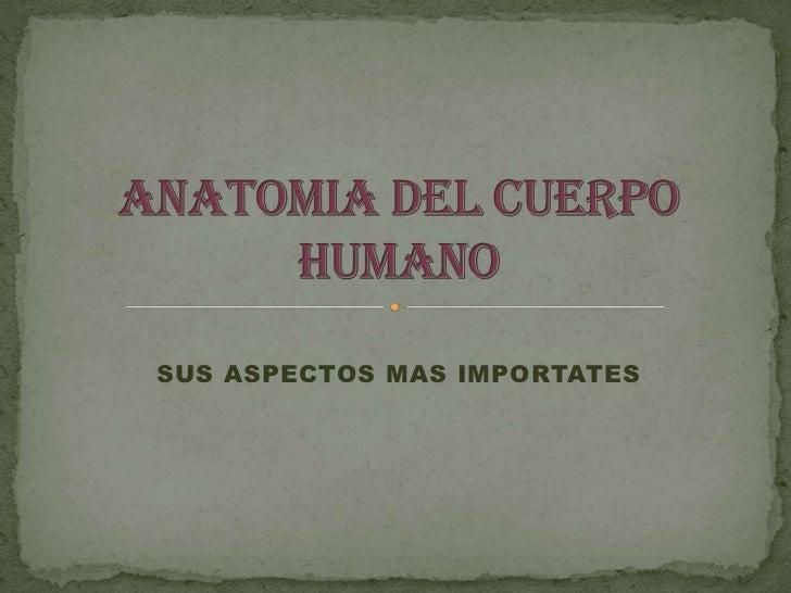 SUS ASPECTOS MAS IMPORTATES<br />ANATOMIA DEL CUERPO HUMANO<br />
