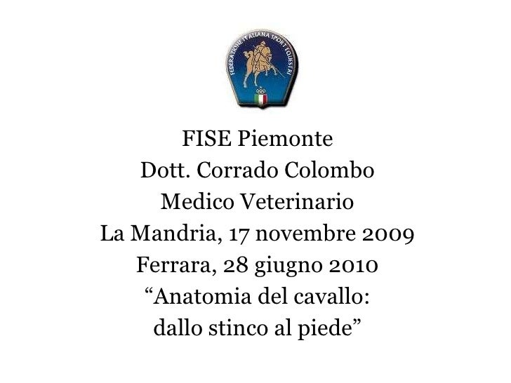 "FISE Piemonte Dott. Corrado Colombo Medico Veterinario La Mandria, 17 novembre 2009 Ferrara, 28 giugno 2010 "" Anatomia del..."